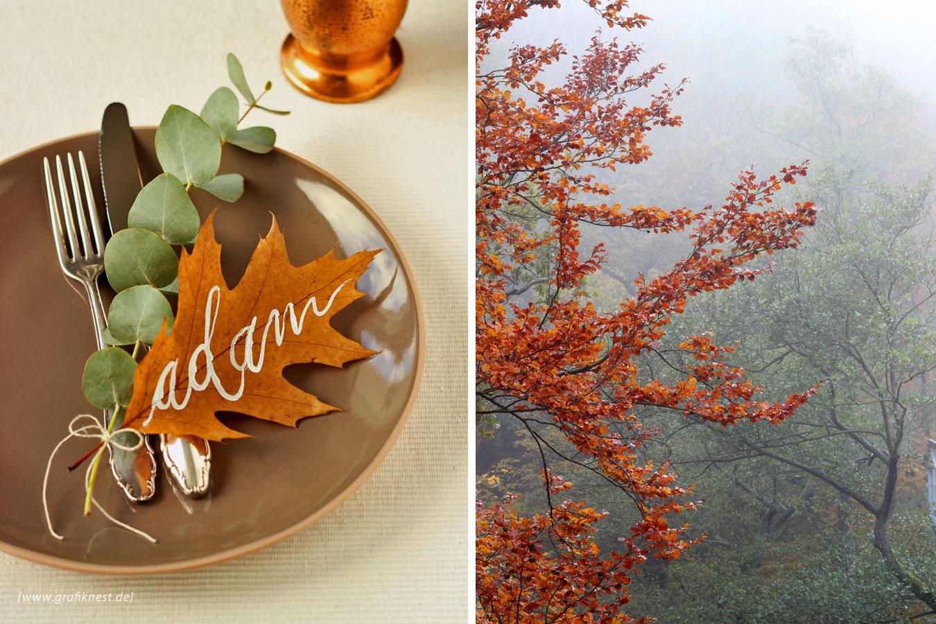 Hand Lettering auf Herbst Blatt