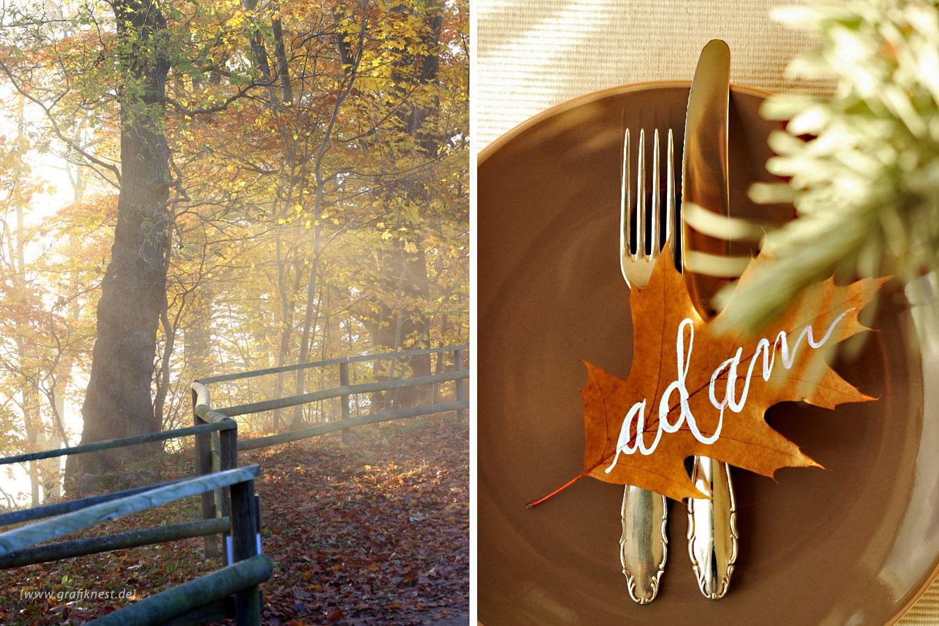 Hand-Lettering auf Herbst-Laub