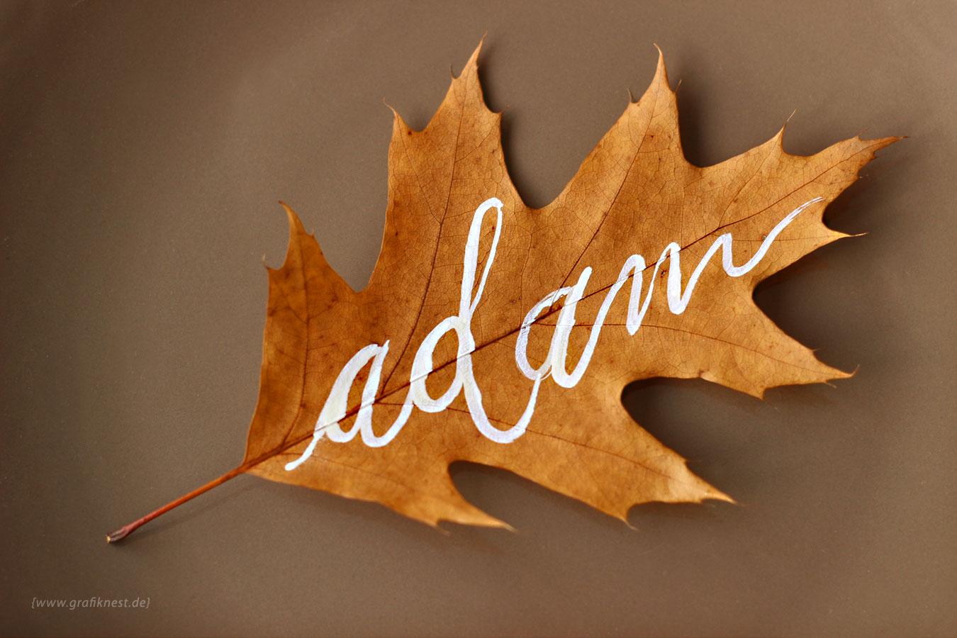 Hand Lettering Herbst Blatt