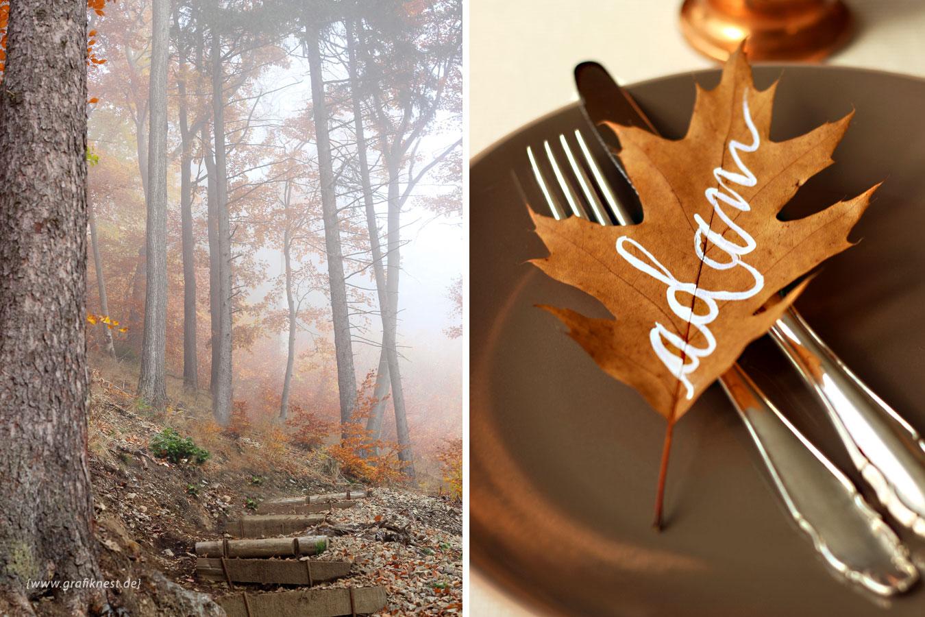 Herbst Wald Impression mit Namen auf Laub geschrieben
