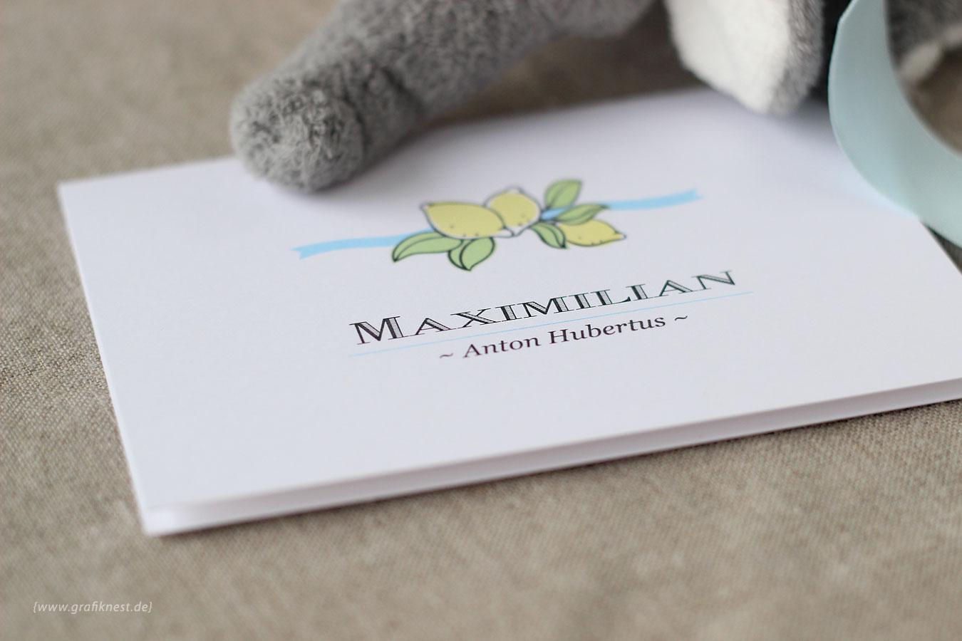 Babykarte zur Geburt von Maxi