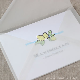 { Babykarte zur Geburt von Maximilian }